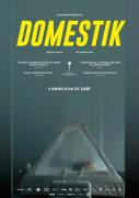 Domestik (2018)