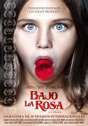 Bajo la Rosa (2017)